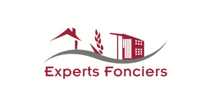 logo-cef-expert
